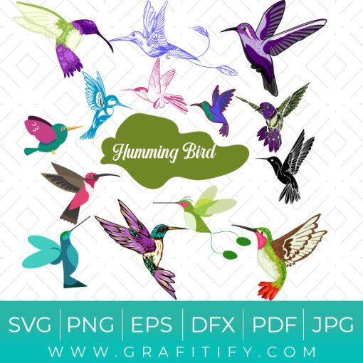 humming bird SVG